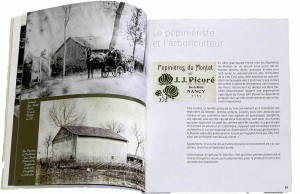 Création des pépinières du Montet en 1881